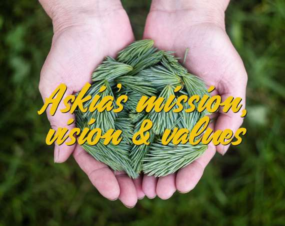 Askia's mission, vision and values header image