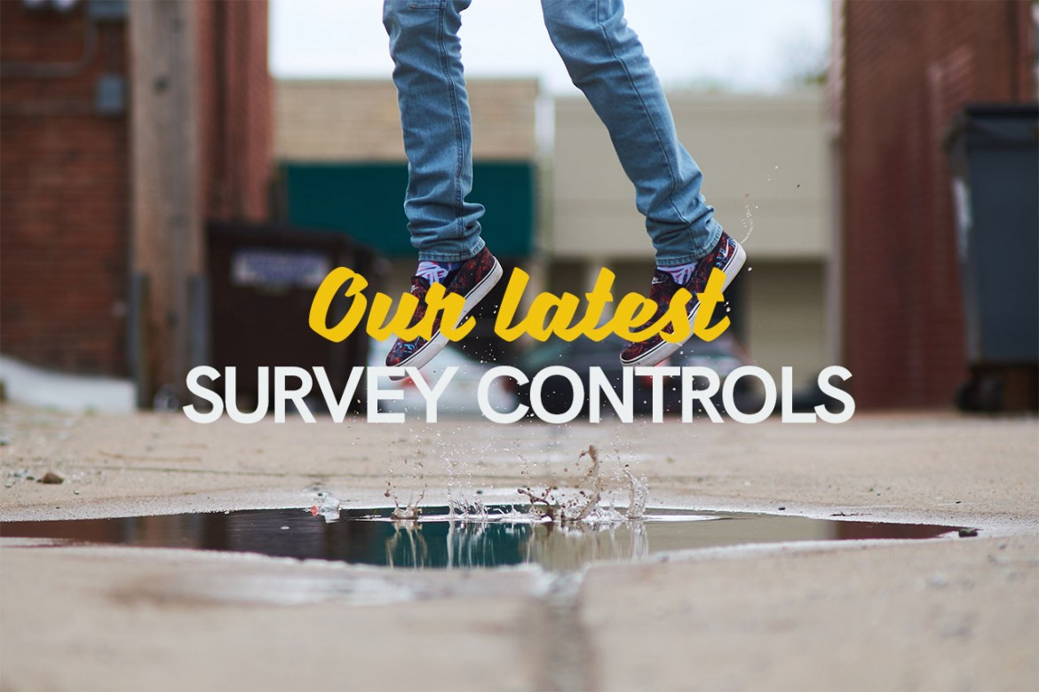 Our latest survey controls header image