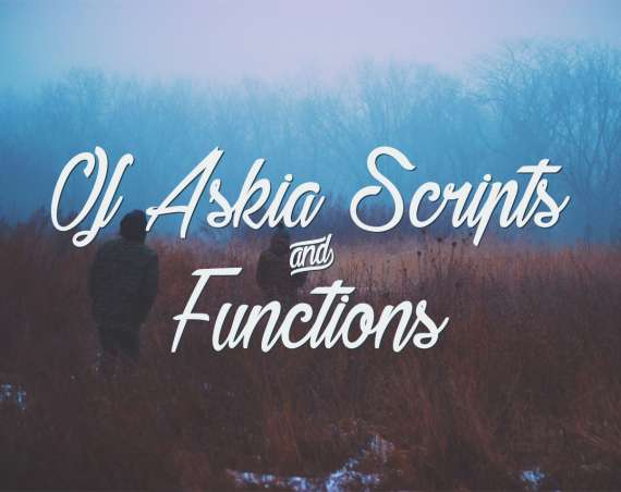 Of Askia Scripts and Functions