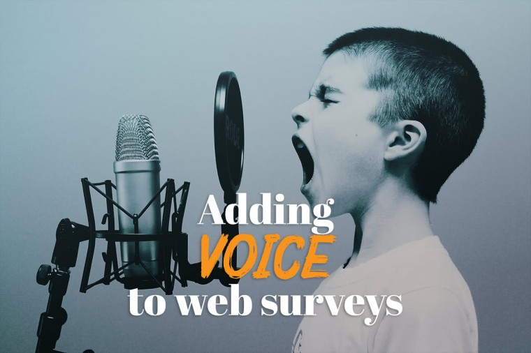 Adding voice to web surveys